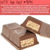 kit kats wtf fun fact