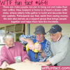 kiwi coffin club wtf fun facts