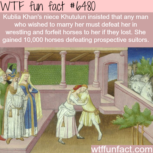 Kublia Khan - WTF fun facts