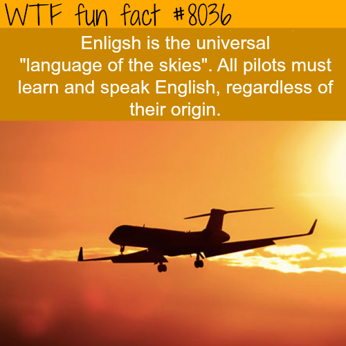 Language of the skies - WTF fun fact
