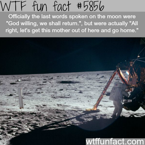 Last words on the moon - WTF fun facts