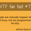 lazy facts