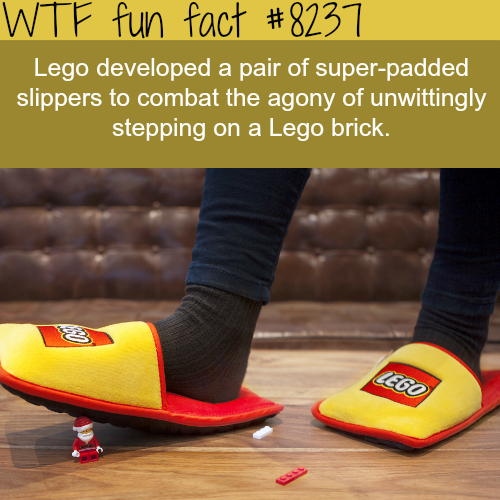 Lego slippers - WTF fun facts