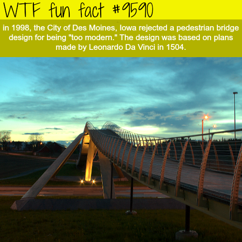 Leonardo Da Vinci Bridge - WTF fun fact