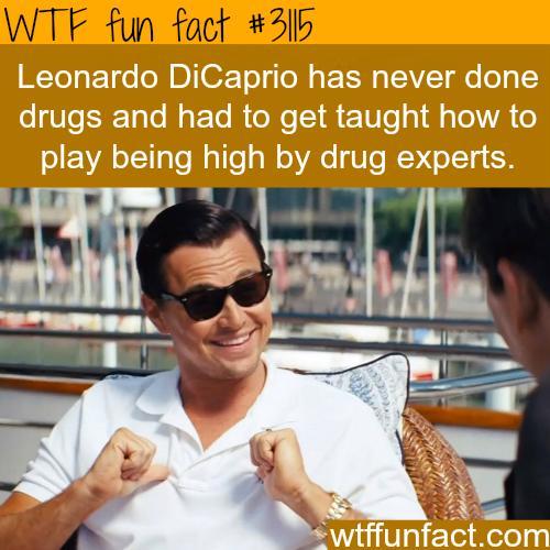 Leonardo DiCaprio In the Wolf of Wall Street -  WTF fun facts