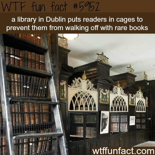 Library in Dublin that puts readers in cages - WTF fun facts