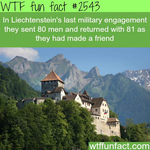 Liechtenstein army  - WTF fun facts