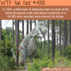 life sized dinosaurs in alabama wtf fun facts