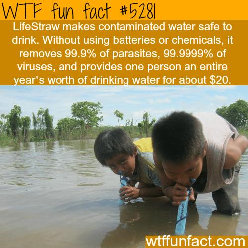 LifeStraw - WTF fun facts