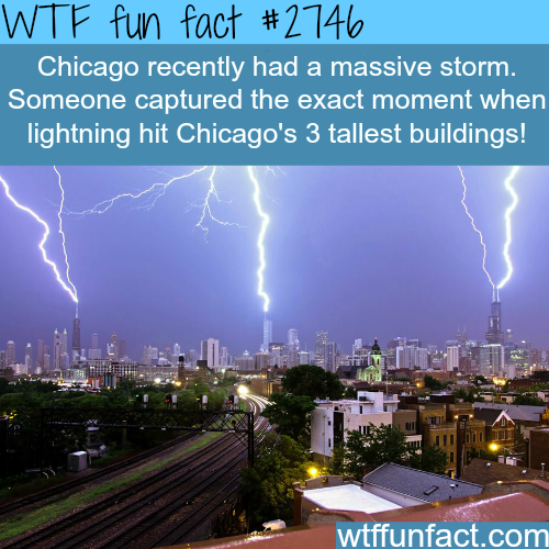 Lightning hits the tallest three building in chicago at the same time - WTF fun facts