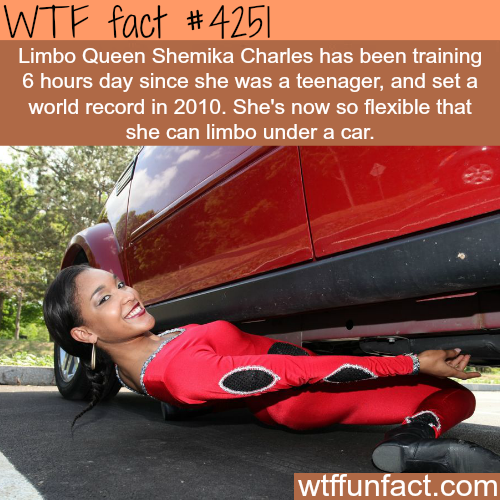 Limbo Queen Shemika Charles -  WTF fun facts