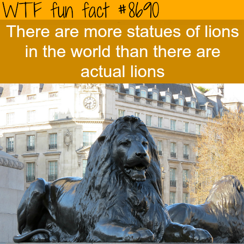 Lion statues - WTF fun facts