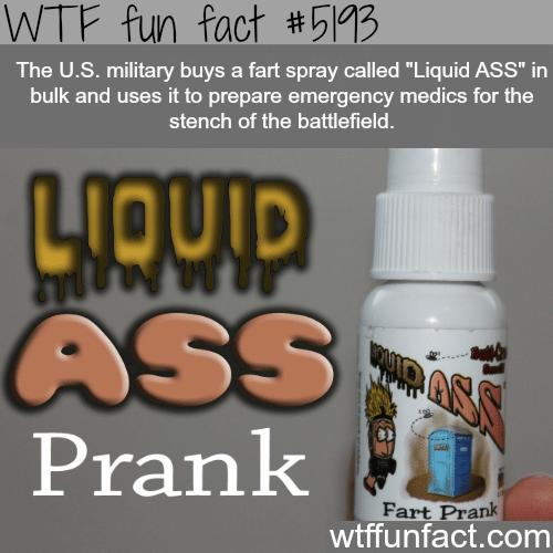 Liquid ass fart spray - WTF fun facts