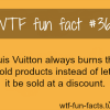 llouis vuitton