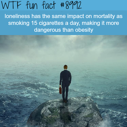 Loneliness - WTF fun fact