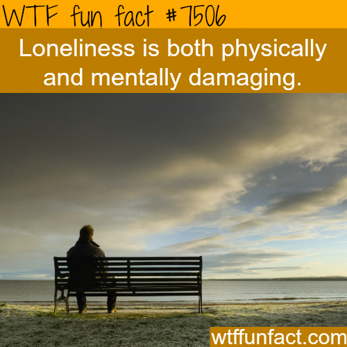 Loneliness - WTF FUN FACTS