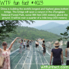 longest and highest glass bottom bridge in the