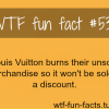 louis vuitton burning products