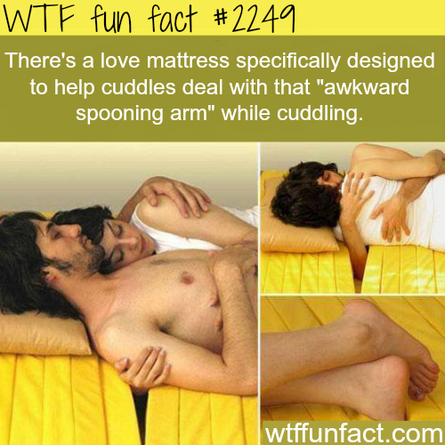 Love mattress specifically designed to help cuddles - WTF fun facts
