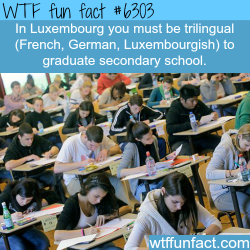Luxembourg - WTF fun facts