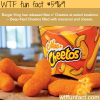 mac n cheetos at burger king wtf fun facts