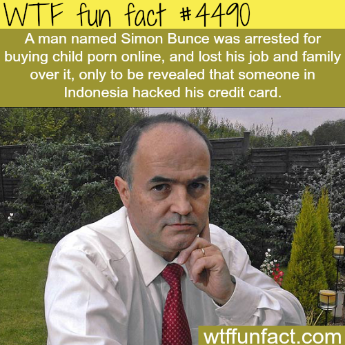 Man arrested for buying child porn online -   WTF fun facts