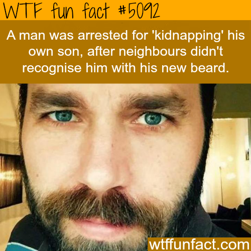 "Man arrested for ""kidnapping"" his own son - WTF fun facts"