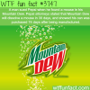 man finds a mouse in his mountain dew wtf fun