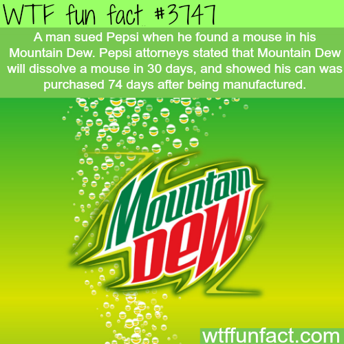 Man finds a mouse in his Mountain Dew - WTF fun facts