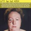 man hired a hitman to kill his wife wtf fun