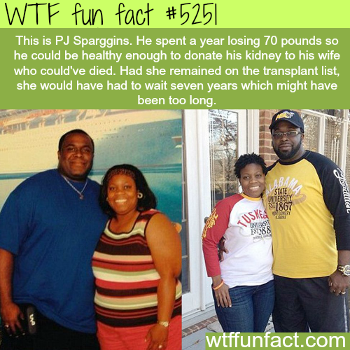 Man spent a year losing weight so he can donate his kidney to his wife - WTF fun facts