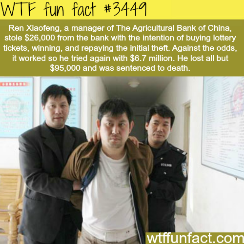Man steals money to buy lottery tickets and wins -  WTF fun facts