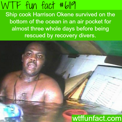 Man survives 3 days in the bottom of the ocean - WTF fun facts