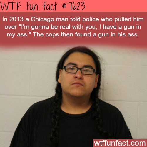 Man told the police that he is hiding a gun in his butt - WTF fun facts
