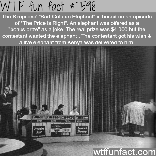 Man wins an elephant in the Price is Right - WTF fun fact