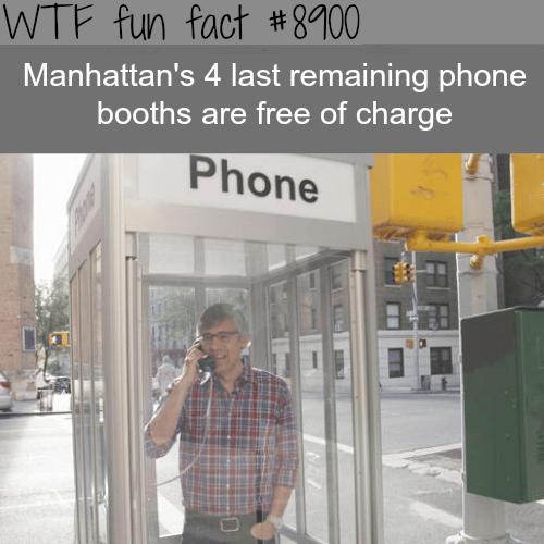 Manhattan's last phone booths - WTF fun facts