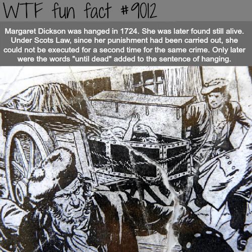 Margaret Dickson - WTF fun facts