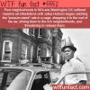 massive rat infestation in 60s era washington dc