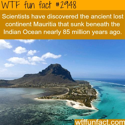 Maurita