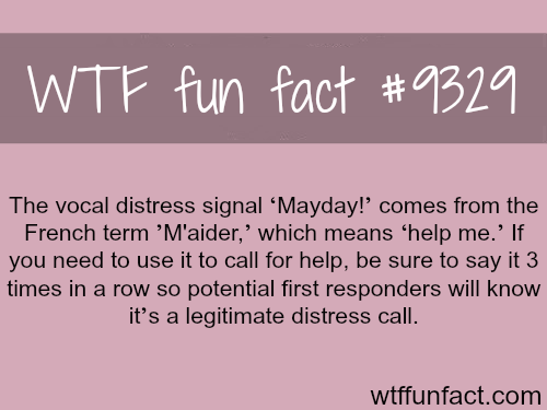 Mayday - WTF fun facts