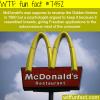 mcdonalds golden archest facts