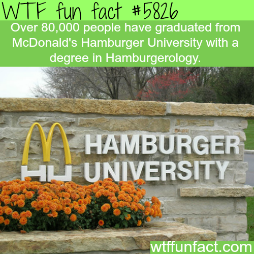 McDonald's Hamburger University - WTF fun facts