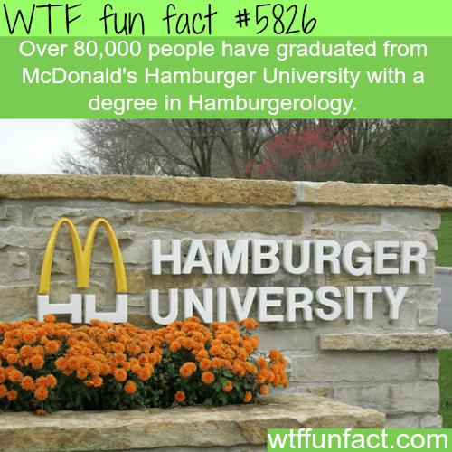 McDonald's Hamburger University - WTF fun facts