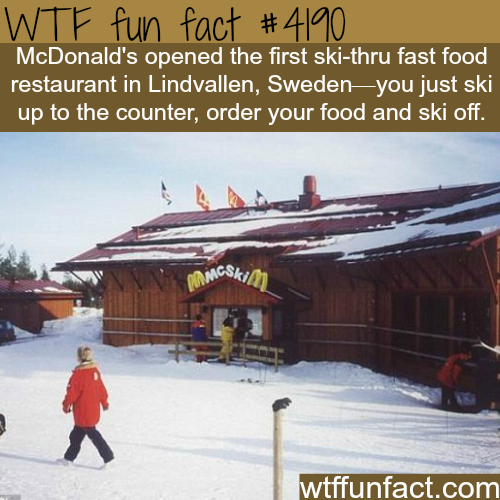 McDonald's ski-thru restaurant in Sweden -  WTF fun facts