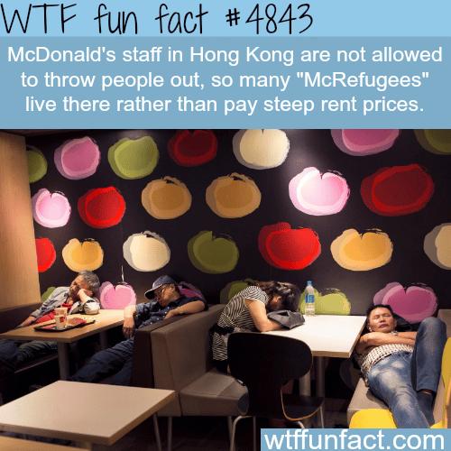 McRefugees in Hong Kong - WTF fun facts