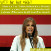 melania trumps speech plagiarism wtf fun facts