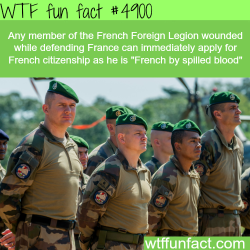 Members of the French Foreign Legion - WTF fun facts