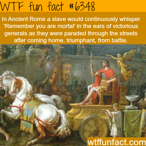 Memento mori    - WTF fun facts