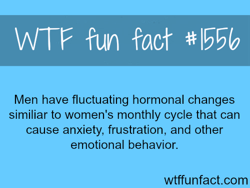 Men's Monthly cycle? WTF fun facts