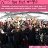 metallica performed in antarctica wtf fun facts